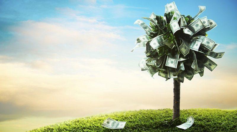 как сделать инвестиции в МФО