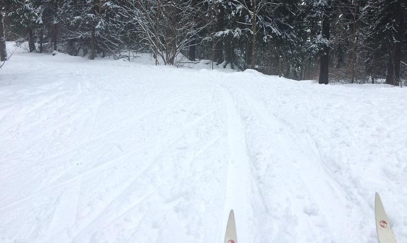 Катался на лыжах в феврале
